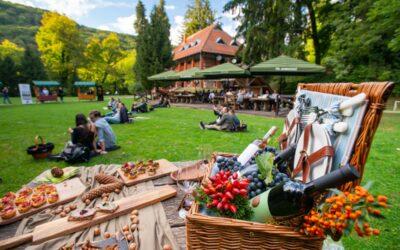 """Vinski piknik"" u Park šumi Jankovac – Galerija fotografija"
